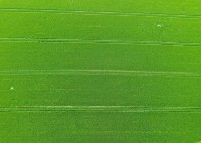 Drohnenfoto Feld